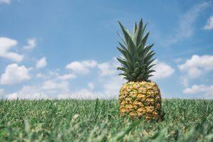 pineapple-867245_1280